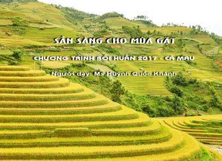 Chuong trinh boi huan 2017 ca mau